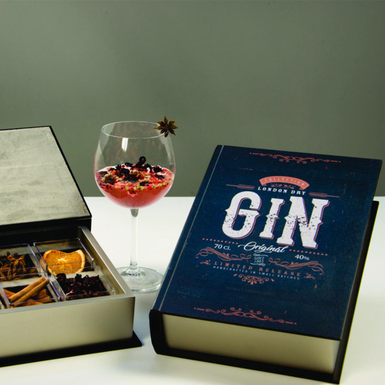 Livro Caixa Gin