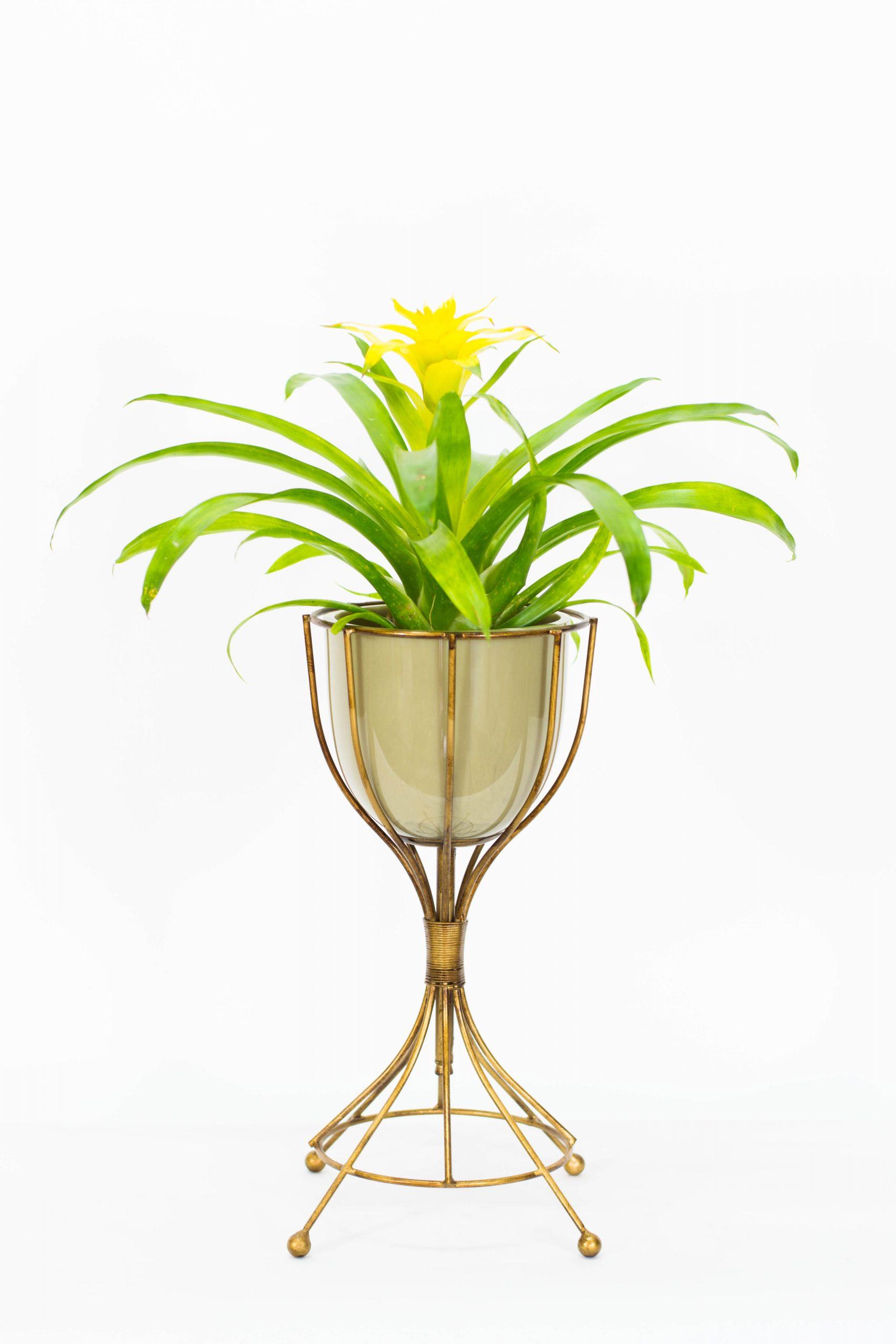 Floreira de Resina e Ferro - Z/2344