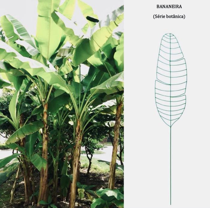 Folha de Bananeira - Referencias