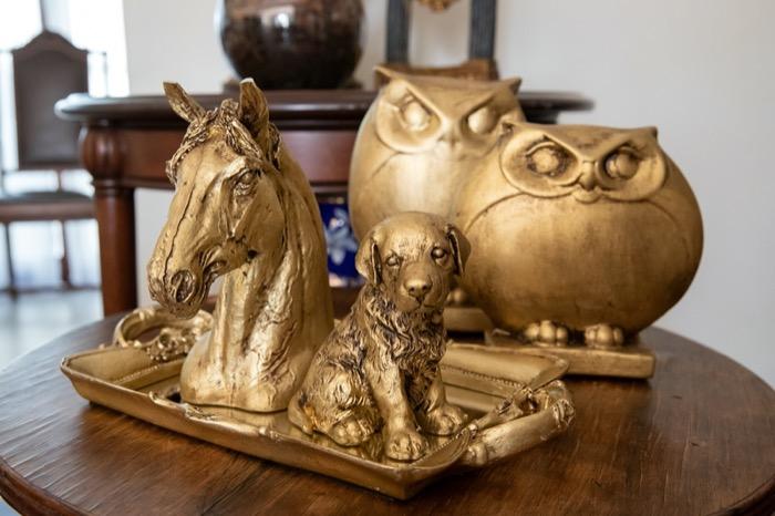 Cavalo,cachorro e corujas
