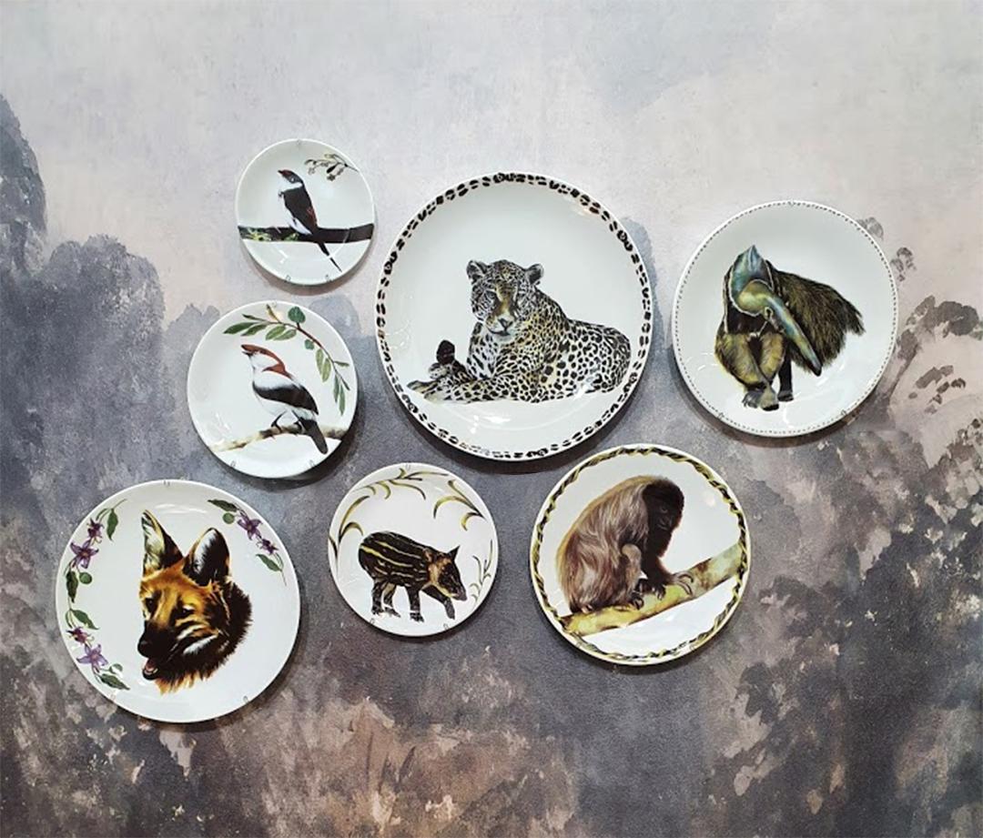 Coleção Animais Silvestres